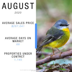 market-report-august-2020