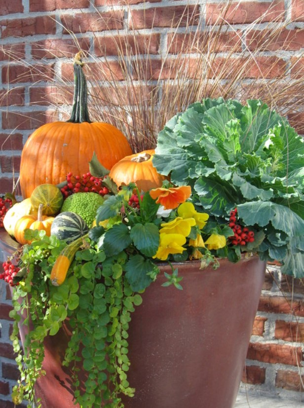 pumpkins in outdoor planter